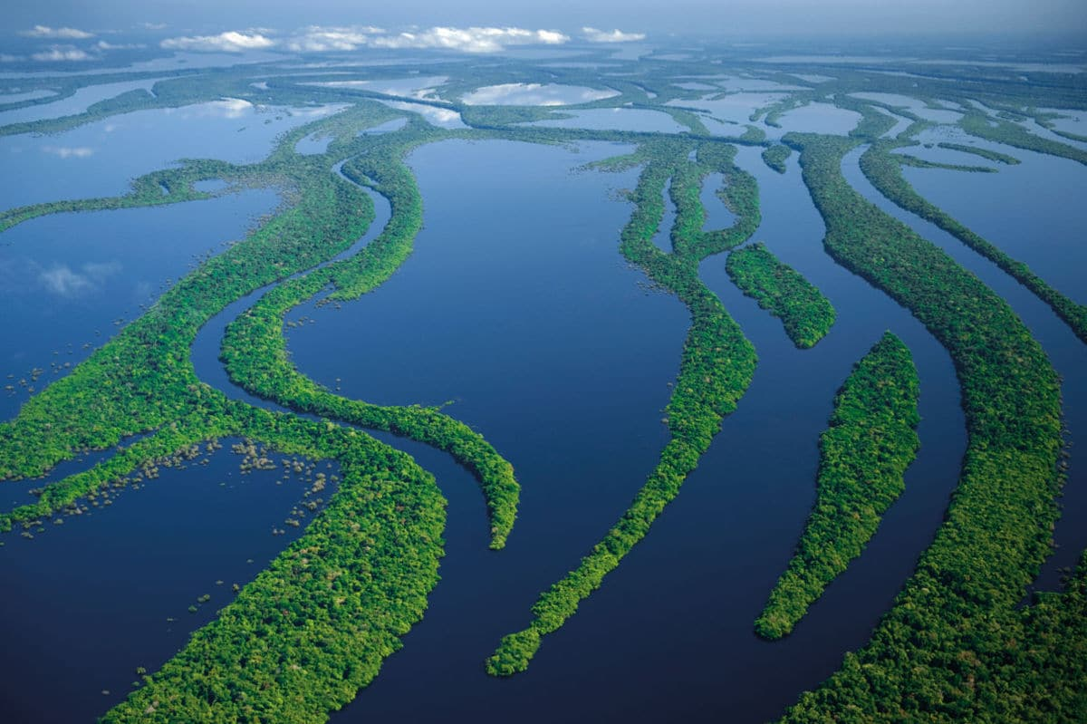 Amazonian River History Origin Characteristics Depth And Much More