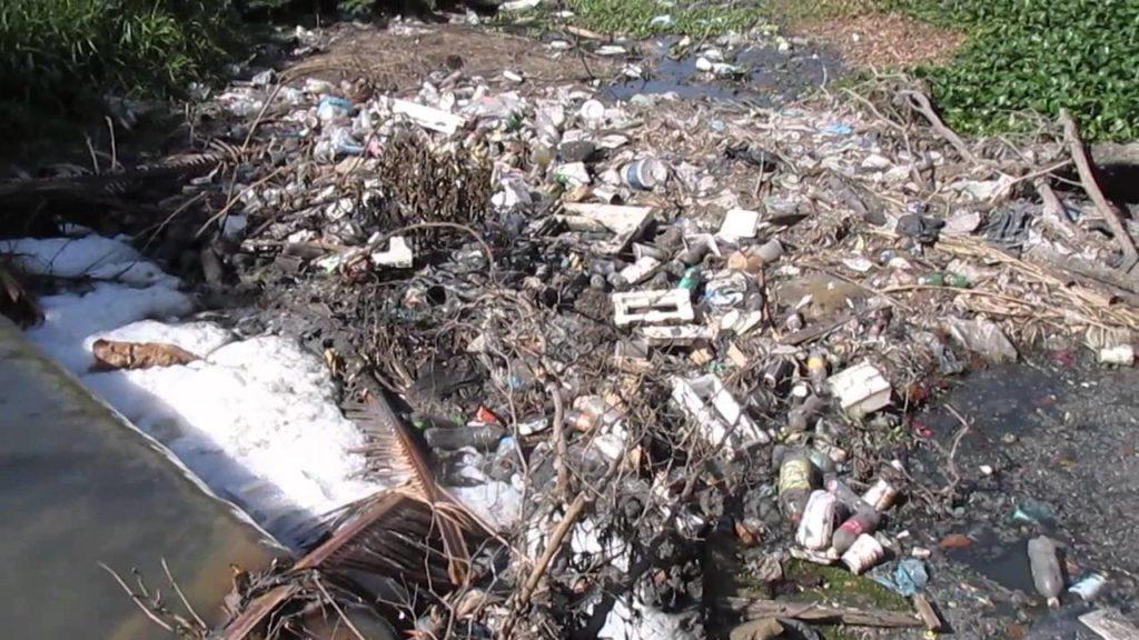 contaminacion del rio balsas