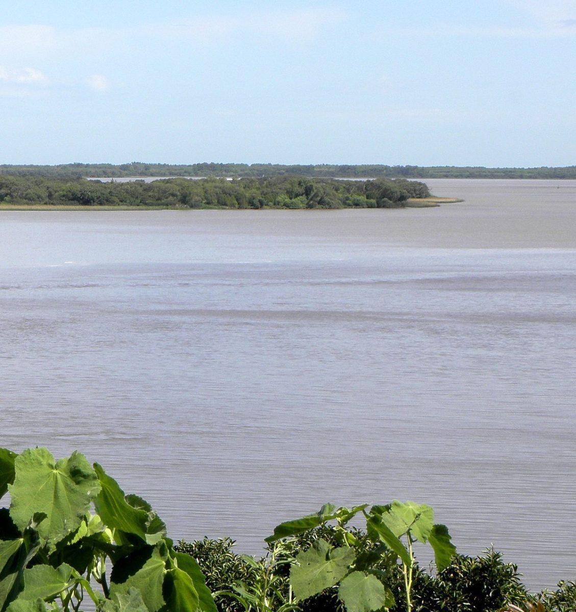 afluente del rio parana