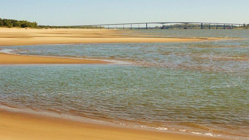 rio uruguay bacterias