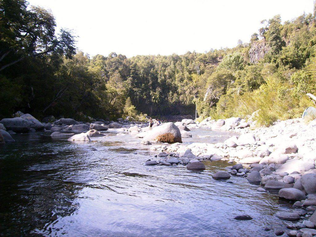vista del rio diguillin